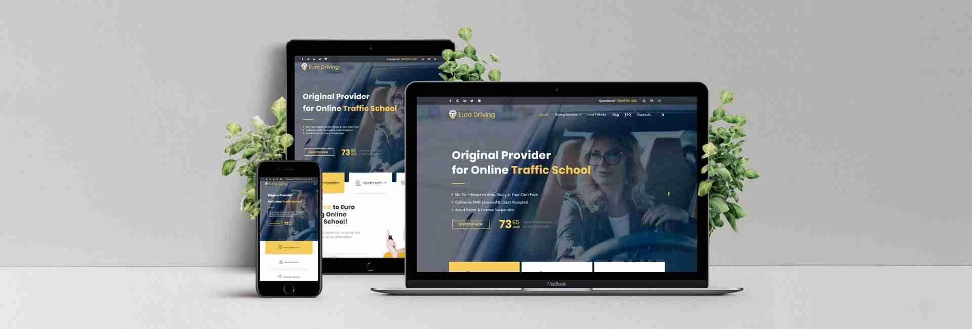 Web Design & Development for Euro Driving