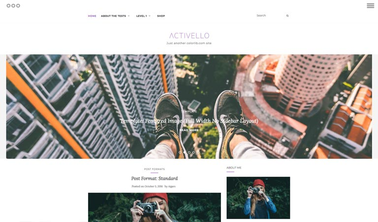 Free WordPress Templates
