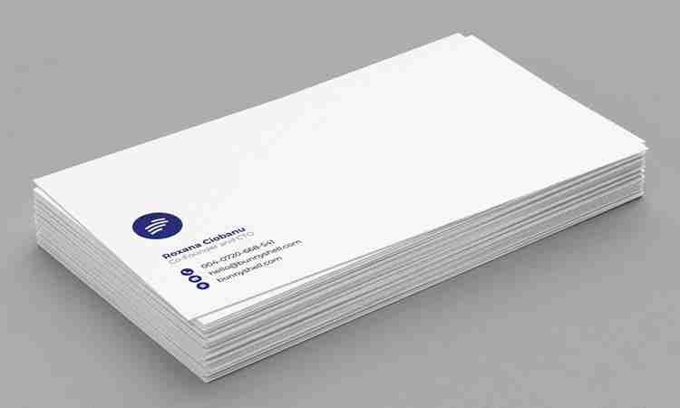 Calling Card Design: BunnyShell