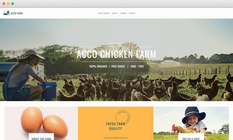 Website Design for Acco Farm